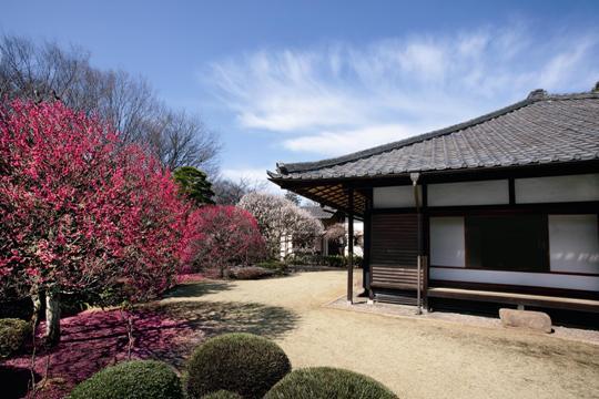 KODAIRA HIRAKUSHI DENCHU ART MUSEUM (Tokyo)