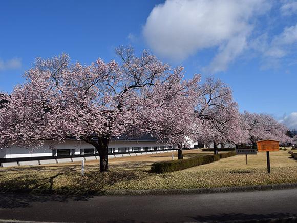 Fukushima Prefectural Museum (Fukushima)