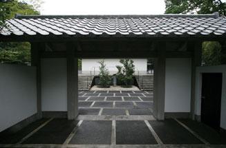 Clematis eno Oka,Yasushi Inoue Literary Museum (Shizuoka)
