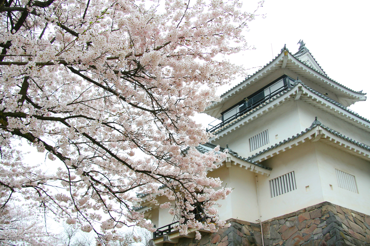 Nagaoka City Home Archives (Niigata)