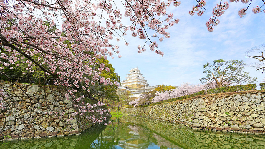 Himeji Castle (Hyogo)