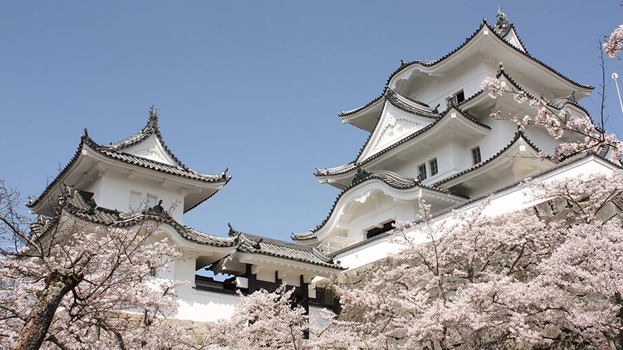 Iga-Ueno Castle (Mie)